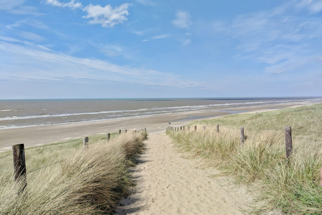sand path leading to the North Sea, The Netherlands