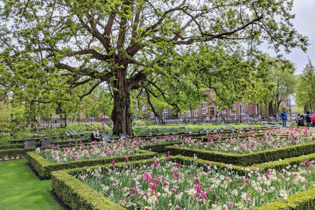 Rijksmuseum gardens in Amsterdam, The Netherlands