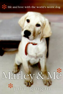 Grab the tissues because this book will definitely make you cry. You really ought to read Marley and Me by John Grogan