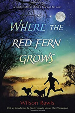 Book cover for Where the Red Fern Grows by Wilson Rawls