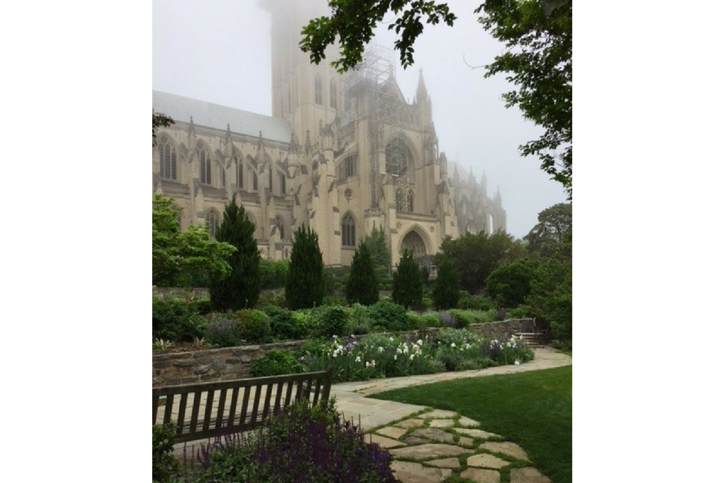 washington dc, national cathedral
