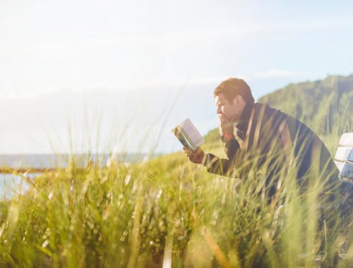 man reading on bench in field