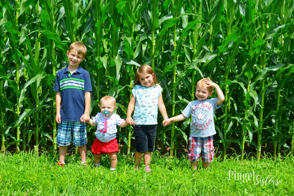four children in front of cornfield
