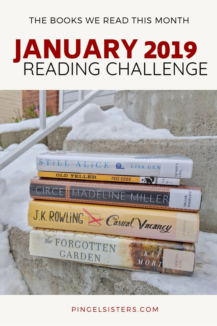 January 2019 Reading Challenge Update // All the Books We Read This Month