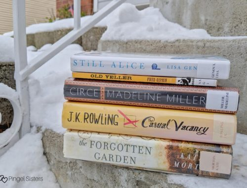 book stack in snow