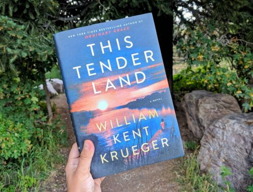book - This Tender Land by William Kent Krueger